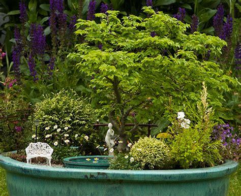 a pond in a pot building a miniature garden timber press
