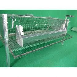 gabbie per quaglie usate gabbia per quaglie ovaiole