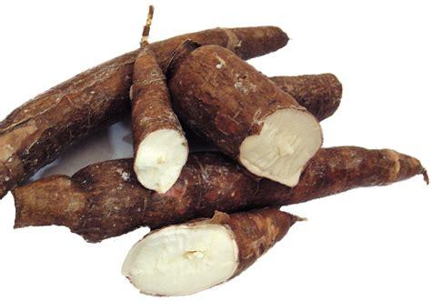 cassava rezepte suchen
