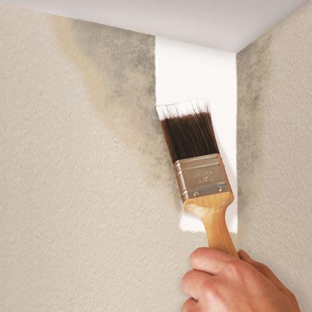 anti fungal paint for bathrooms anti fungal paint for bathrooms 28 images paint for