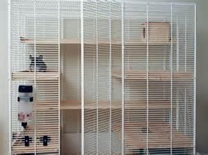 chinchilla cage shelves chinchilla cage chinchilla cages