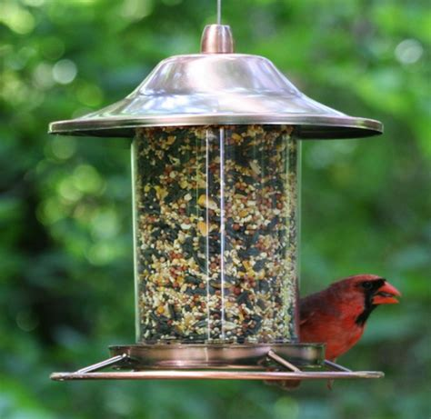 best copper panorama bird feeder best bird feeders