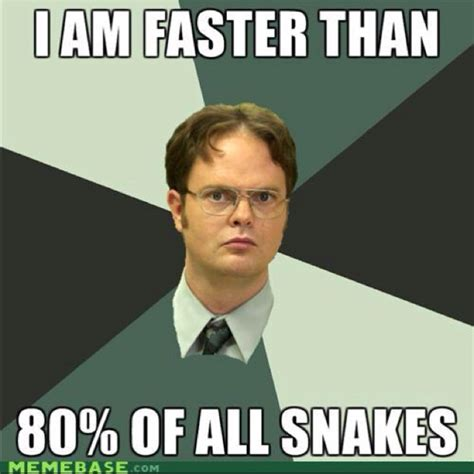 Dwight Memes - dwight k schrute quotes quotesgram