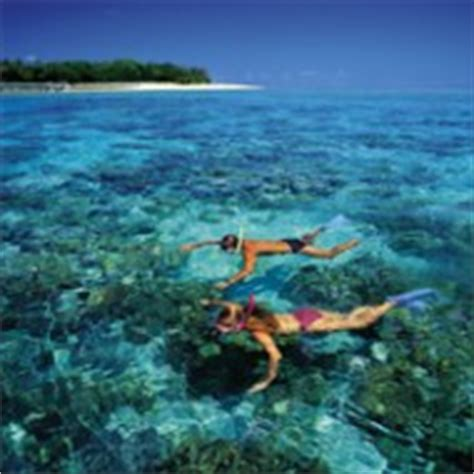 glass bottom boat mombasa great barrier reef cruise with snorkeling or glass bottom