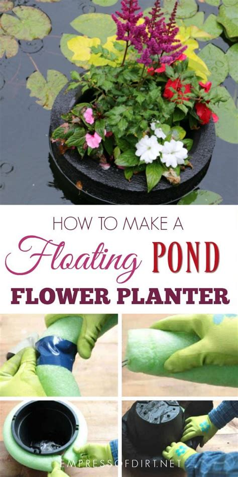 the frog 2 see how they grow ebook how to make a floating pond planter empress of dirt