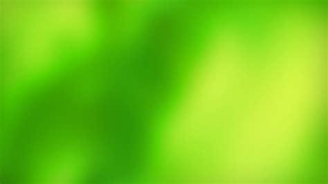 green wallpaper living room