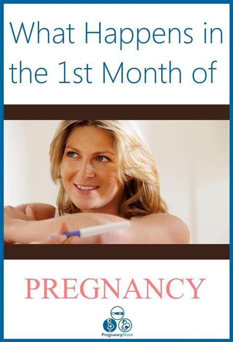 1st month of pregnancy best 25 month of pregnancy ideas on 7 month of pregnancy pregnancy months