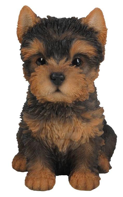 vivid arts pet pal dogs yorkshire terrier pup
