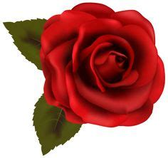 red rose png clipart clipart pinterest rose clip