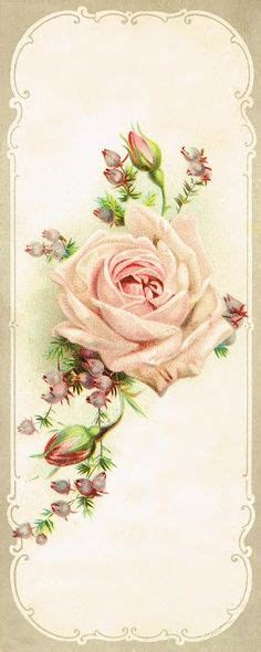 libro vintage roses beautiful varieties 1000 images about tattoo on foot tattoos for women rose tattoos and foot tattoos
