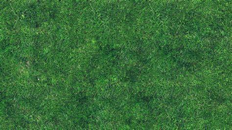 Pattern Nature Grass   3840 x 2400