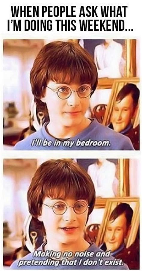 What To Do This Weekendi Could Do Thisor Thi 2 by Harry Potter Collection 12 Pics