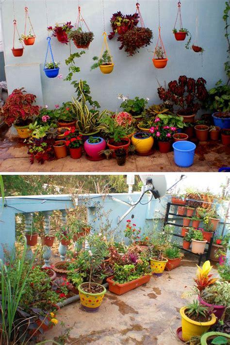 garden  madhus colorful terrace garden indian