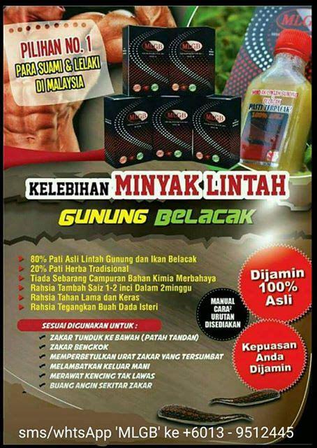 Minyak Lintah Terbaru leech and belacak with kkm approved 11street