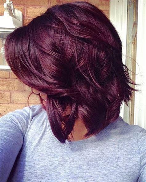 Plumb Hair Colour by 25 Best Ideas About Plum Hair On Plum