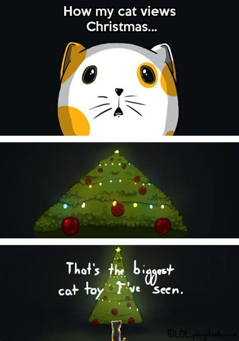 cat on top of christmas tree meme memes animal pictures and