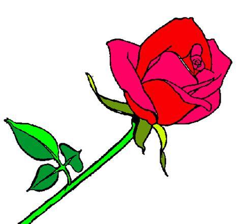 imagenes chidas rosas imagenes para dibujar de rosas chidas imagui