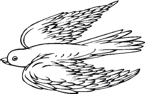 coloring pages of birds flying flying bird coloring pages