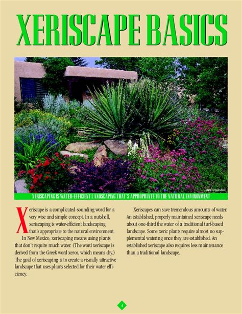 the complete how to guide to xeriscaping albuquerque