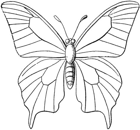 Coloring Now 187 Blog Archive 187 Butterfly Coloring Pages For Butterfly Coloring Page