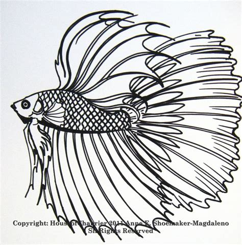 coloring pages of betta fish 252 beste afbeeldingen over laurie to color op pinterest