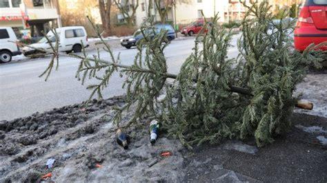 weihnachtsbaum entsorgen wie geht s am besten sat 1
