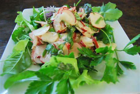 radish salad recipe radish basil salad recipe failure dining with debbie