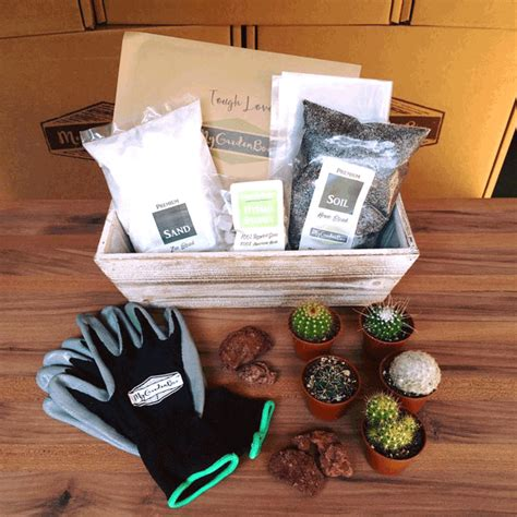 Gardening Subscription Box 10 best gardening subscription boxes for gardeners