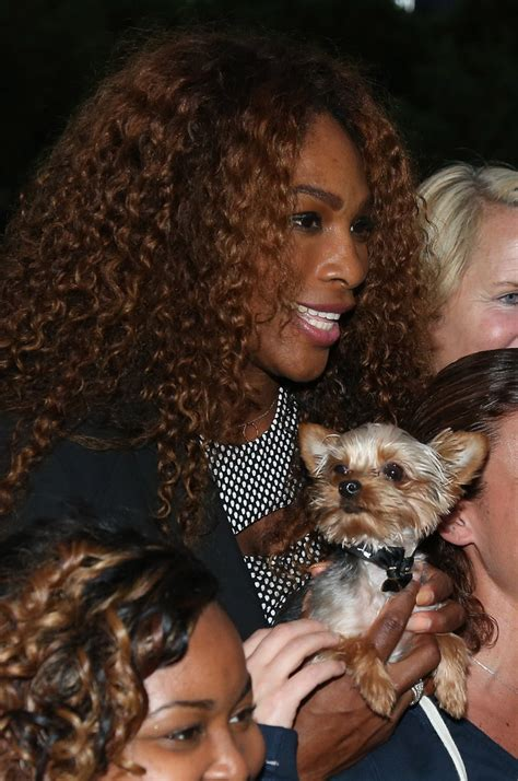 Serena Williams Pooch On The Mound by Serena Williams Photos Photos Serena Williams Poses With