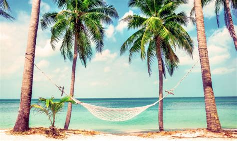 marlin travel packages and vacations deals