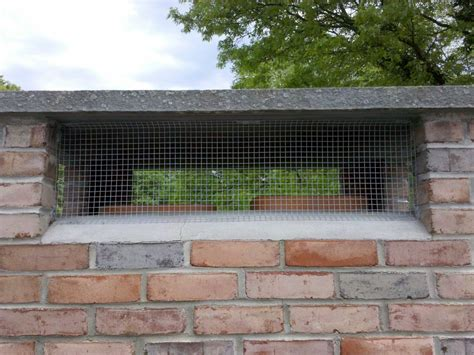 Bats In Fireplace Chimney by Rat Proof Screens For Fireplaces Images