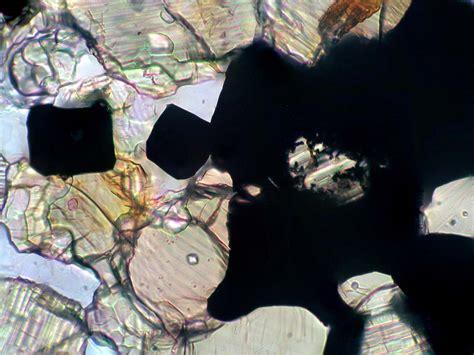 minerals in thin section ibitira meteorite meteorite times magazine