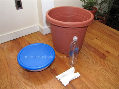 self watering planters diy bucolic bushwick diy self watering planter how to convert a standard planter