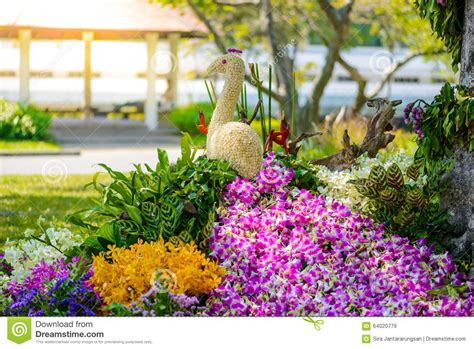 a shaped garden flower flower garden is shaped peacock stock photo image 64020779