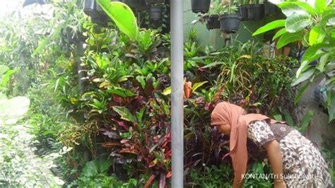 Lu Hias Taman jual tanaman sekaligus jasa pembuatan taman 3