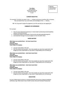 Career Objectives Template College Essay Examples Good