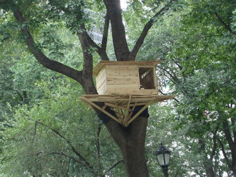 simple tree house designs tree house simple tree house designs