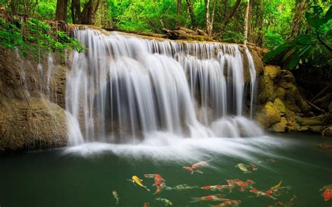 gambar pemandangan air terjun hd wallpapers backgrounds gambar wallpaper air terjun pelangi gambar kartun lucu