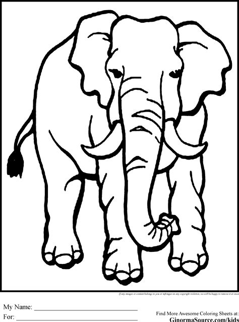 coloring pages animals elephant elephant coloring page