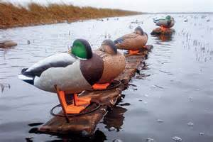 Blinds For Hunting Islands Lure Wary Waterfowl