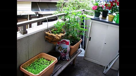 Gardening Ideas For Small Balcony Creative Small Balcony Garden Ideas