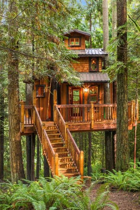 real treehouse tree house plus normal one for sale in woodinville