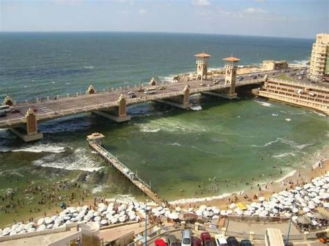Alexandria Search Alexandria Around The World