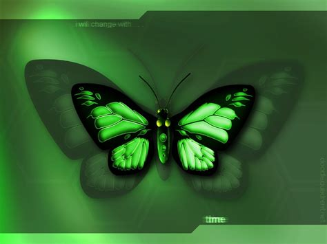 green butterfly wallpaper funny animal very sweet and cute animals 3d butterfly wallpaper