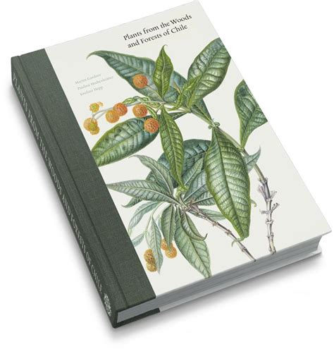martius the book of 3836556235 top 71 ideas about botanique books botanical illustration on the golden plants