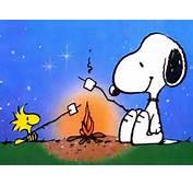 Snoopy Wallpaper  33124683 Fanpop