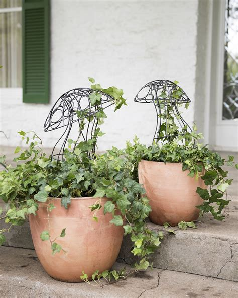how to make a wire topiary frame image gallery topiary frames