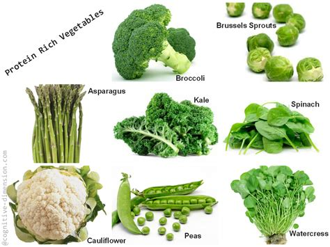 protein rich vegetables image gallery protein vegetables