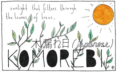 words for light in other languages ella frances sanders 11 untranslatable words from other