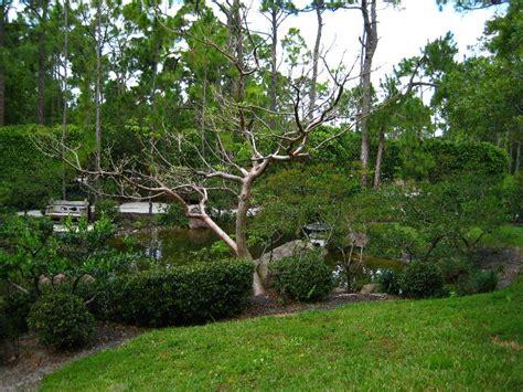 Japanese Gardens Florida by Morikami Museum Japanese Gardens Delray Fl 178